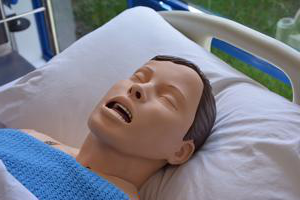 head 和 shoulders of a synthetic patient on a bed