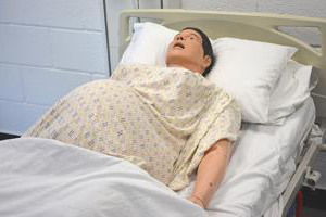synthetic patient lying down with a bump to suggest pregnancy