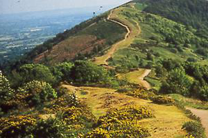 view of the top of the malvern hills